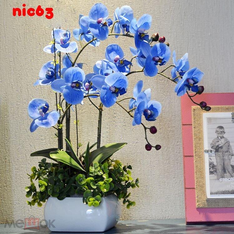 Семена Орхидеи Синяя 10 штук