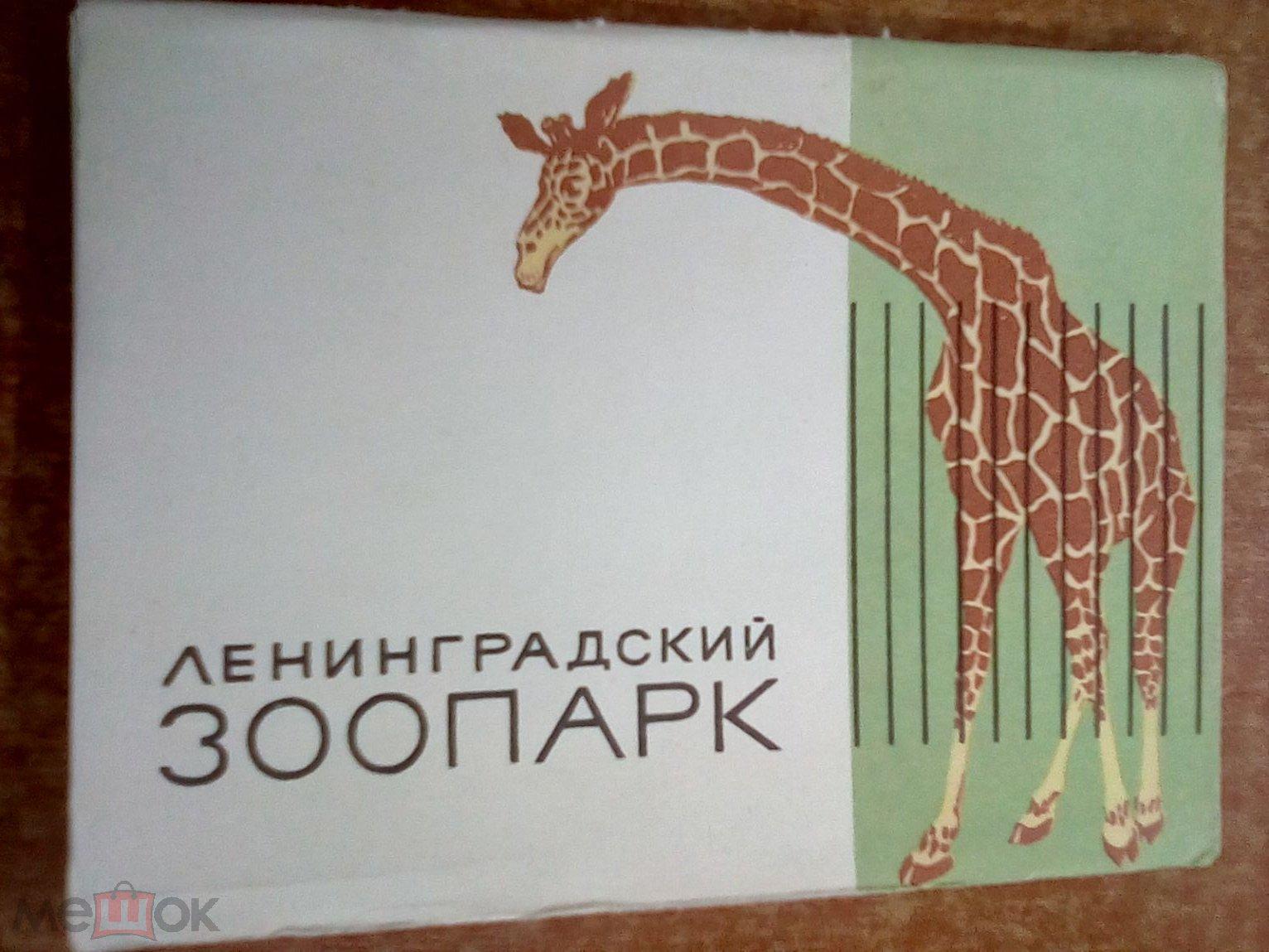 Открытки зоопарка, иисусом смешные
