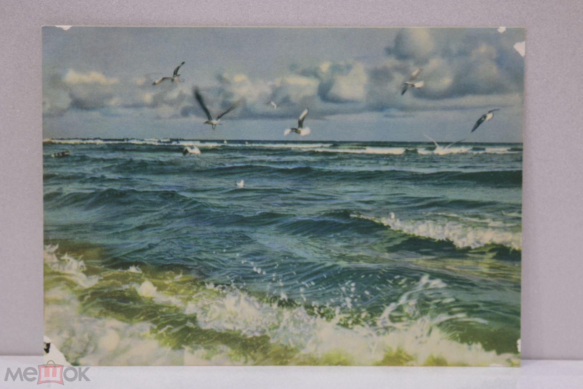 Добрым, гифка море чайки волны