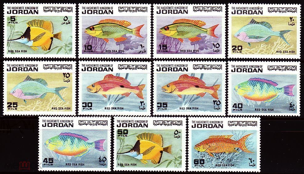 1974 Иордания 896-906 Морская фауна 38,00 €