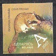 Беларусь 2007 №692 Десятый стандартный выпуск. Соня лесная**