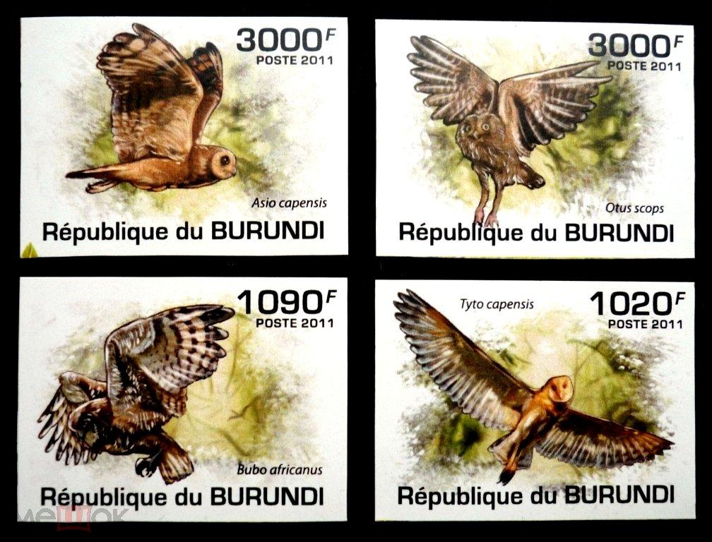 Бурунди 2011, Птицы, Совы №2, ФАУНА, 4 марки б/зуб, MNH.