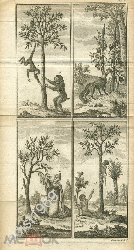 1659 БИБЛЕЙСКАЯ ИСТОРИЯ. БЫЛ НАГ, И ВЫ ОДЕЛИ МЕНЯ