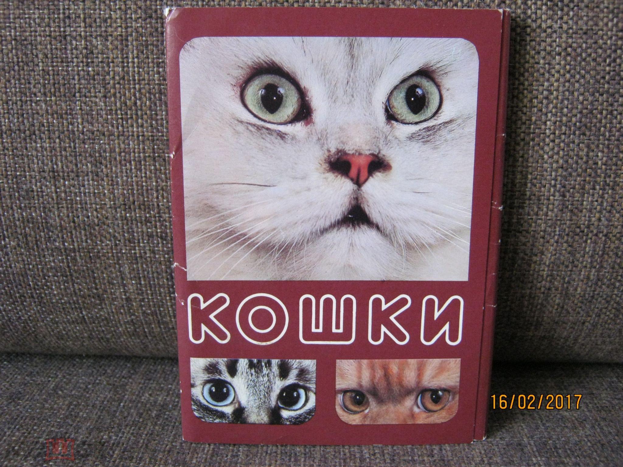 Набор открыток кошки, любимый мой люблю