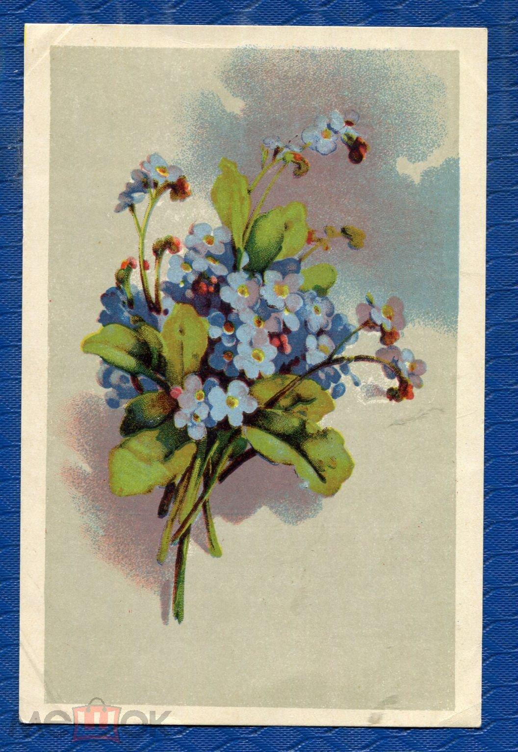 Открытка полевые цветы 1954 год, картинки