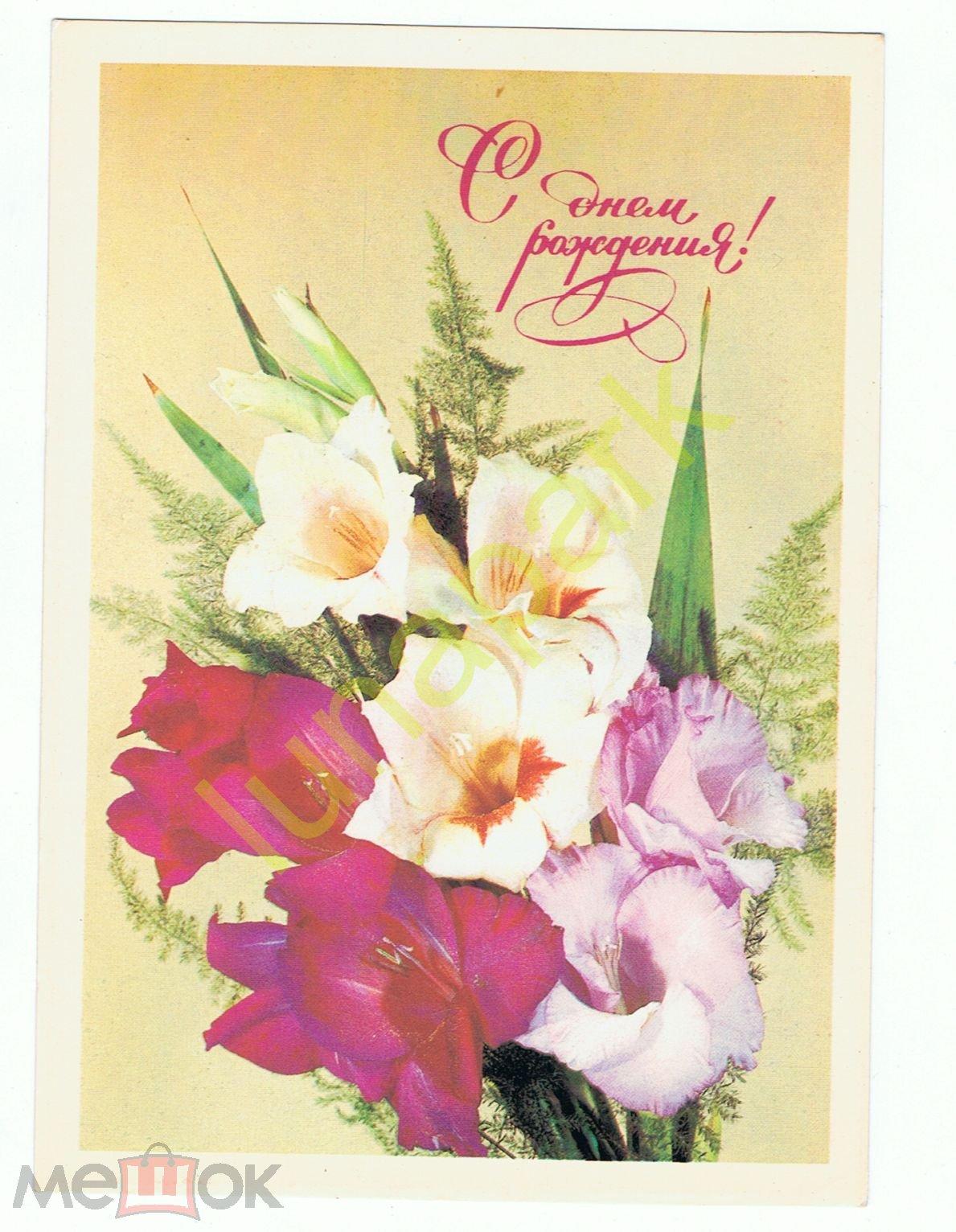 С днем рождения открытки гладиолусы, любимый открытки картинки