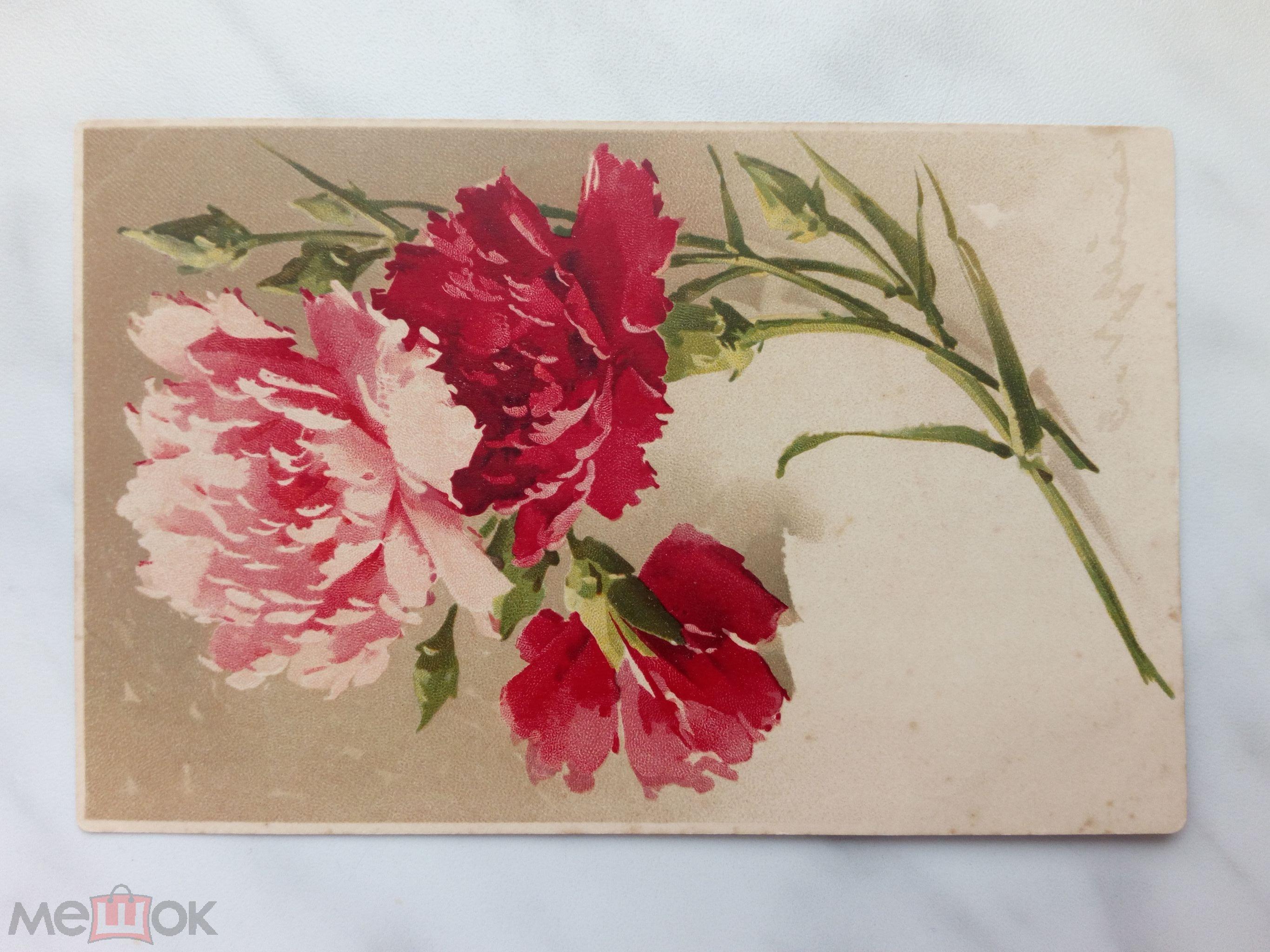 Гвоздика открытки