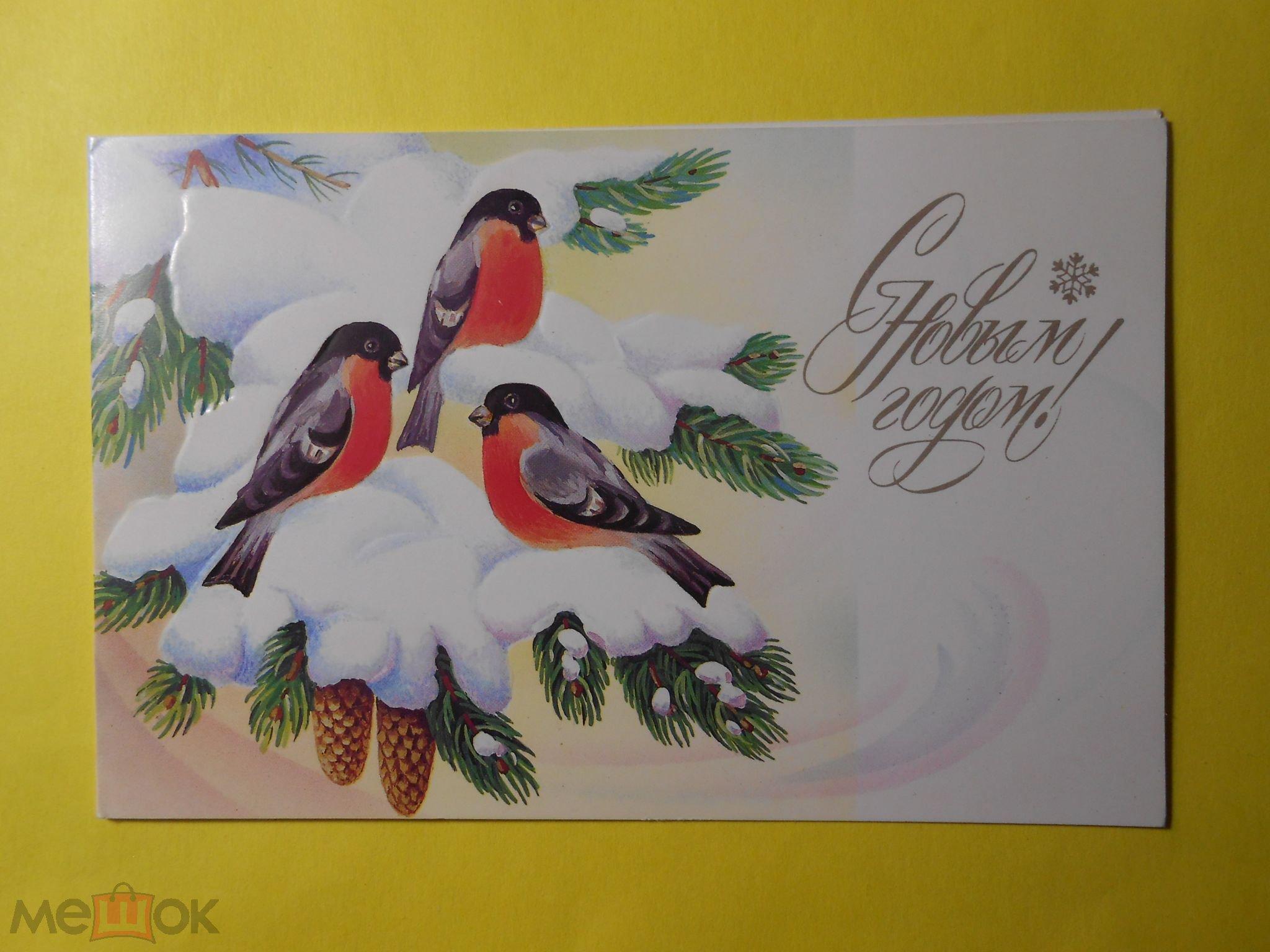 Открытки день, снегирь на открытках