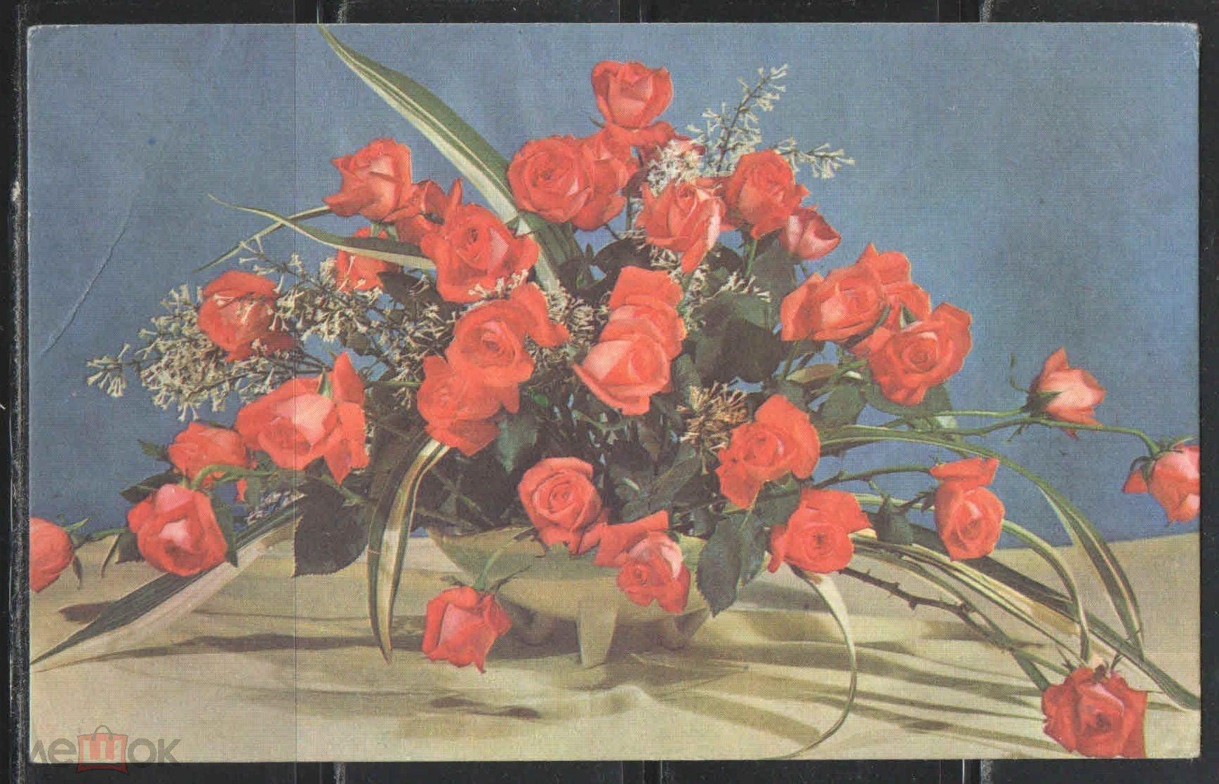 Цветы открытки советские смотреть в хорошем качестве