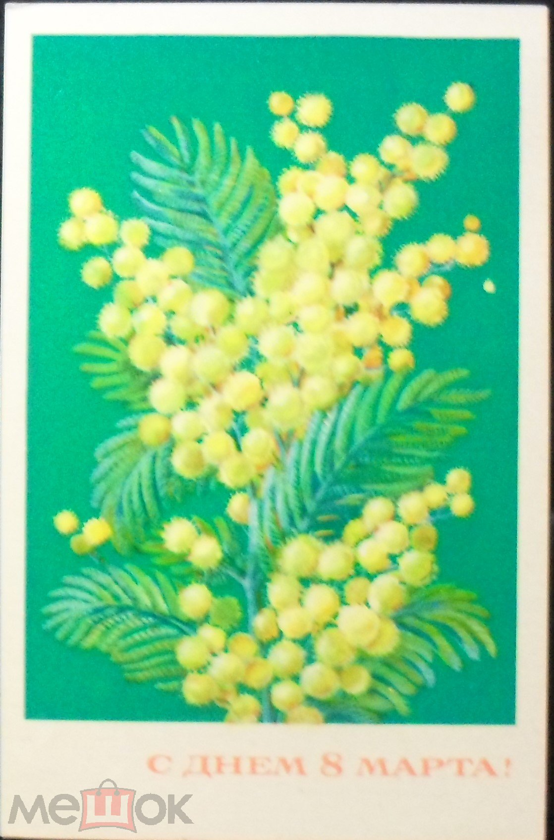 Елена шмелева открытка мимоза показать ее, открытки день рождения