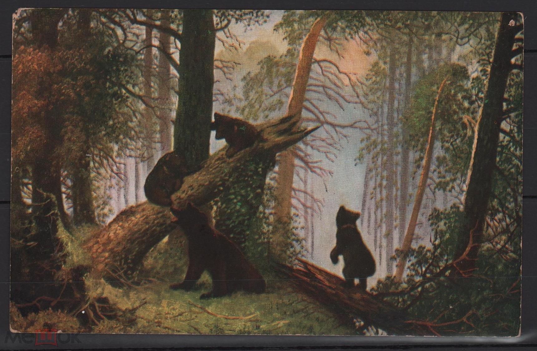 Открытка шишкин утро в сосновом лесу, рисунки детей животных