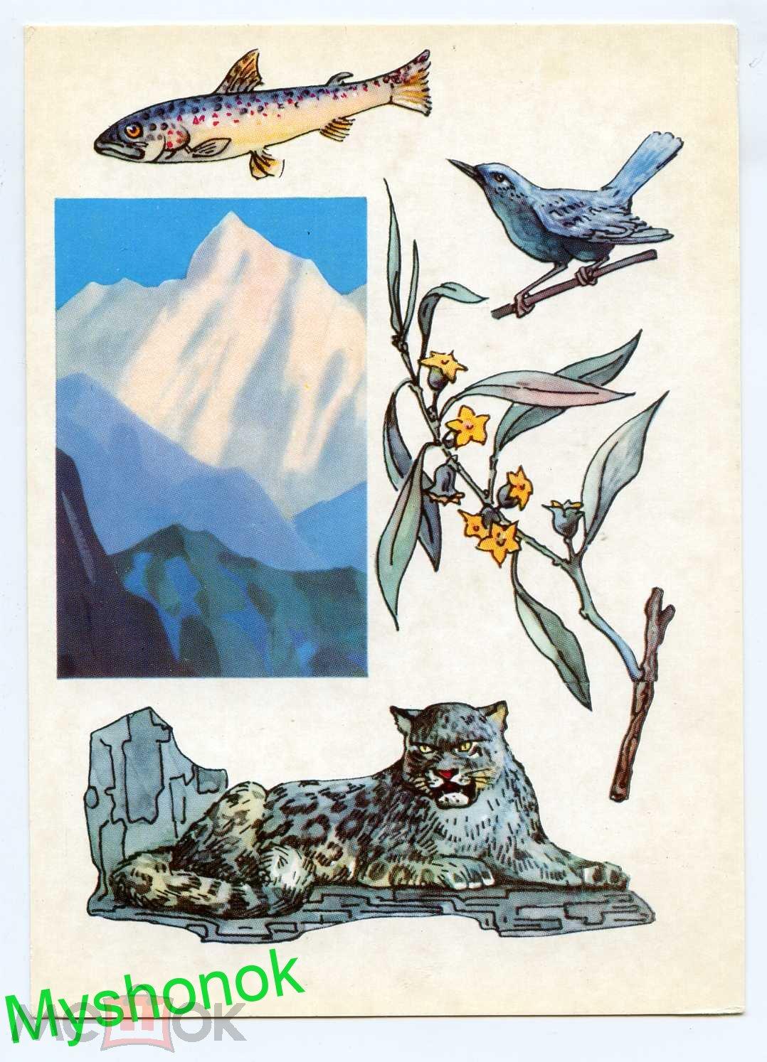 Набор открыток по заповедным местам ссср, хорошего дня открытка